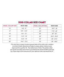 Collar Size Chart Personalized Braided Leather Dog Collar