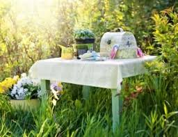 summer outdoors wallpaper. Planting, Herbs, Gardening, Summer, Chair, Outdoors Summer Wallpaper S