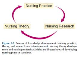 nursing theories nursing theory history and modernity