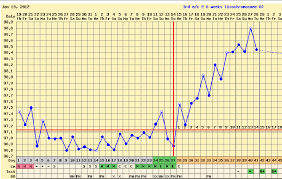 My Fertility Charts My Life Is About The Journey Living And Dying By The Chart