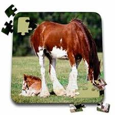 clydesdale mare and foal jigsaw puzzle clydesdale horses horse gifts jigsaw puzzles puzzles