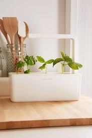 and grow a miniature herb garden for a kitchen countertop gardenista