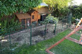 wire garden fence panels. Delighful Fence FenceHome Depot Snow Fence Awesome Unusual Chicken Wire Panels  Electrical Circuit Home On Garden