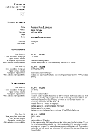 Cv Guidelines Templates