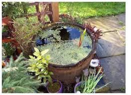 Small Picture Garden Ponds pueblosinfronterasus