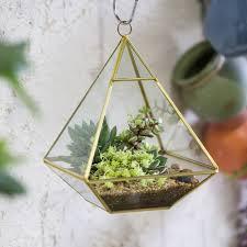 Golden Four-surfaced Diamond Glass Geometric Terrarium Succulent Fern Moss  Plant Flower Pot Wall Gardening
