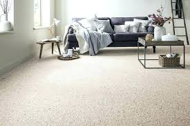 Carpet Colors For Living Room Fascinating Best Carpet For Family Room With Pets Carpets Size Finit