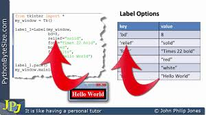 how to access the options of a python tkinter label