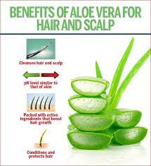 tips on using aloe vera for hair growth