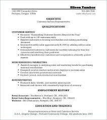 Free Customer Service Resume Templates Fascinating Customer Service Definition Resume Customer Service Functional