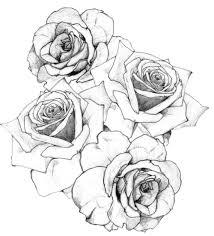 Disegno Disegno In Bianco E Nero Design 500551 Png Trasparente
