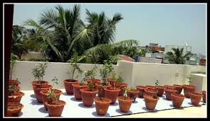 Terrace Kitchen Garden Spaces Gardening Redefined