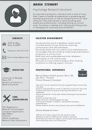 best resume format ceo resume cv examples best resume format ceo resume samples in pdf format best example resumes best looking resume template