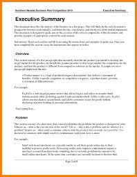 Business Plan Sample Pdf Sop Example Executive Summary Template Doc