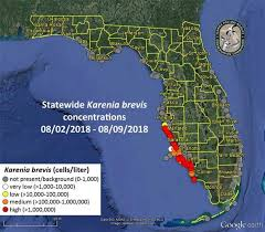 Tide Chart Hudson Fl Florida Red Tide 2018 Map Update When Will Red Tide End