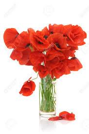 Bouquet De Coquelicots L Duilawyerlosangeles