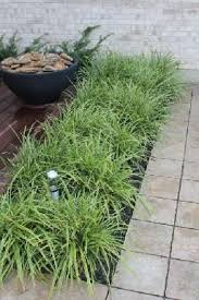 Small Picture 32 best our projects images on Pinterest Outdoor living Grasses