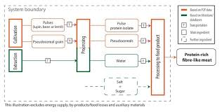 Meat Processing Flow Chart Process Flow Chart Of Protein Rich Fibre Like Meat Prototype