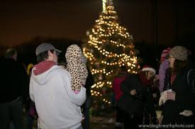 Tree Lighting Reading Ma Nevins Holiday Tree Christmas Feast For The Horses