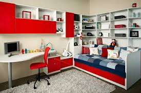 Teen-Bedroom-Storage-Ideas.jpg