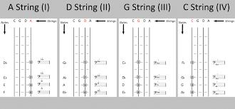 Cello Notes Chart Cello Fingerboard Chart The Cello Companion