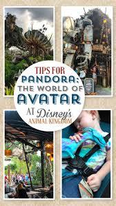 Best 25 Disney parks ideas on Pinterest