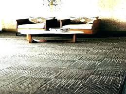 s indoor outdoor carpet for basement floor stairs runner