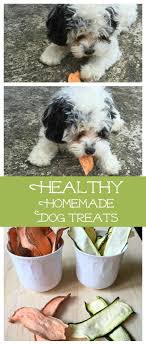 Country Kitchen Dog Treats 25 Best Ideas About Dog Store On Pinterest Dog Design I Love