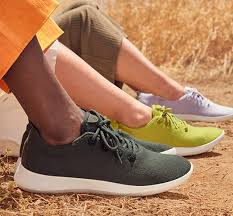 Image result for allbirds sneakers