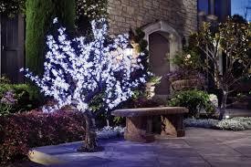 beautiful outdoor lighting. amazoncom white led cherry blossom tree beautiful outdoor lighting patio lawn u0026 garden n