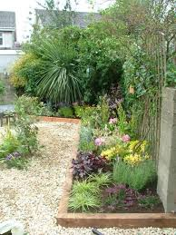Small Garden Plant Ideas Pict