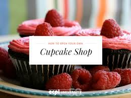 how to open your own cupcake shop a baking and pastry arts  how to open your own cupcake shop a baking and pastry arts diploma