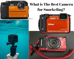 Olympus Tough Comparison Chart What Is The Best Underwater Camera For Snorkeling 2019