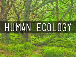 human ecology it s all about culture