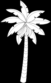 Small Picture unbelievable clip art palm trees coloring pages with palm tree