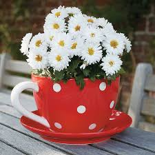 Teacup Flower Planters | Teacup flower pot... cute | My Secret Garden