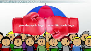 What Is the Scientific Method in Psychology    Definition