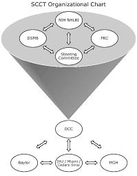 Cedars Sinai Organizational Chart Scct Organizational Chart