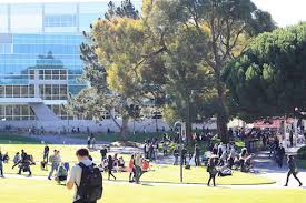 What can you do with a bachelors in creative writing   www yarkaya com College of Liberal   Creative Arts   San Francisco State University