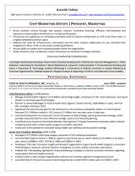 Sales Director Resume Sample Executive Resume Samples