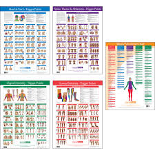 Free Trigger Point Chart Trigger Point Charts 5 Chart Set Kent Health Systems