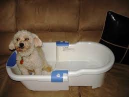 Dog Bath Tub for Your Dogs