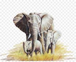 african elephant oil painting canvas oil elephant elephant