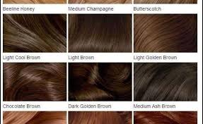 Neutral Hair Color Chart Examples Of Neutral Hair Color Levels Beauty Within Clinic
