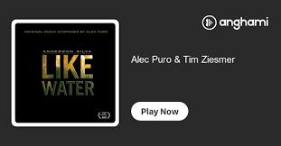Alec Puro & Tim Ziesmer   Play on Anghami