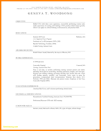 Graphic Resume Templates Awesome Beautiful Pr Resume Template Luxury