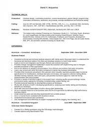 Resume Template Business Analyst Best Of Business Analyst Resume