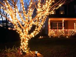 outdoor tree lighting ideas. Outdoor Tree Lights Ideas New How To Put A Outdoors Fresh Lighting