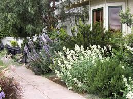 Small Picture Garden Design Garden Design with Backyard Landscape Design Stock