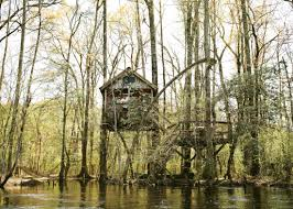 tree houses. Fine Tree Treetop Hideaway Edisto River Tree Houses Intended